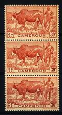 CAMEROUN - CAMERUN - 1946 - Zebù con pastore. -