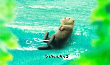 Takara Tomy Panda's ana Shakurel Planet Part4 Wild Animal Ssea Otter Figure
