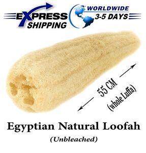 Natural Egyptian Loofah Bath Sponge Body Scrubber Organic Lofa Skin Exfoliate