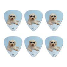 Soft-Coated Wheaten Terrier Sunglasses Novelty Guitar Picks Medium - Set of 6