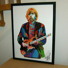 Trey Anastasio Phish Lushington Divided Sky Guitar Poster Print Wall Art 18x24
