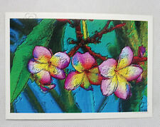 Pink and yellow frangipani flower greeting card from Cloud Publishing