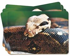 Boa Constrictor Snake Picture Placemats in Gift Box, AR-S3P