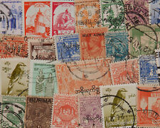 25 Birma