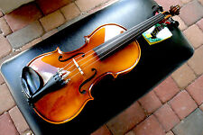 Glaesel VI30E3CH 3/4 Violin w/case Brand New. Made in Europa!