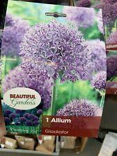 2 Gladiator Allium Bulb Tulip Zones: 3-8. Large spring blooming Purple Flower