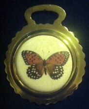 NEW COLORFUL BUTTERFLY Ceramic Horse Brass BUTTERFLY Lover!!  WOW YOUR WALLS!!