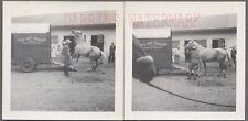 Vintage Photos Whip Cowboy Ced Del Farms Horse Trailer Lancaster New York 734020