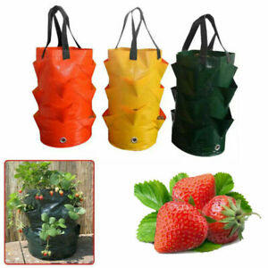 Plant Hanging Planter Grow Bag Pouch Tomato Strawberry Flower Container Pouch B