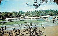 Springfield Massachusetts~Black Horse Motel~Birdseye~1950s Postcard