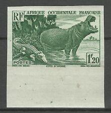Aof Hippopotame Crocodile Flusspferde Non Dentelé Imperf Proof Ungezahnt ** 1947