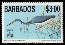 """BARBADOS 864 (SG1021) - Tricoloured Heron """"Egretta tricolor"""" (pa51606)"""