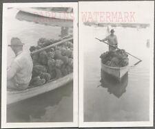 Vintage Photos Man Rowing Boat Full of Sponges 697468