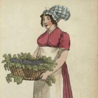 Fruit merchants grapes apples berries 1820 miniature hand color prints lot of 3