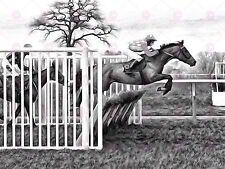 FOTO Dipinto SPORT HORSE RACING Jockey JUMP grandi art print poster lf1701