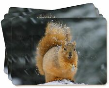 Red Squirrel in Snow Picture Placemats in Gift Box, AS-2P