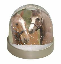 Horse Montage Photo Snow Globe Waterball Stocking Filler Gift, AH-9GL
