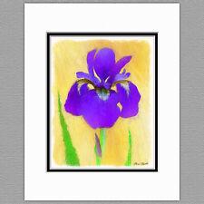 Purple Bearded Iris Flower Original 8x10 Painted Style Art Print Matted to 11x14