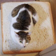 Toast Slice Bread Shape Plush Sponges Fillers Cat Dog Pet Mat Cushion Calm 40*40