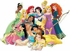 Disney Princesses Iron On Transfer Light or Dark Fabrics 5 x 7 Size