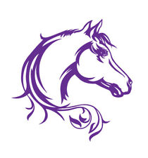 HORSE FLOAT DECAL STICKERS POPULAR DESIGN 1A   440mm x 450mm