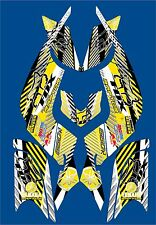 YAMAHA RAPTOR 660R full graphics kit 2001 2005