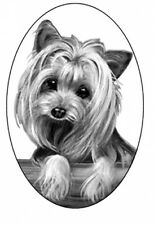 4X6 YORKIE dog static cling glass window decal, for vehicles, homes, mirrors,