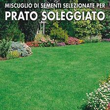 PRATO , SOLE . FLORSILLA KG.5 , MISCUGLIO FLORGREEN