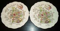 "(2) Royal Doulton HAMPSHIRE 10 1/2"" Dinner Plates"