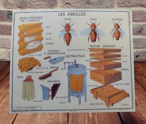 Set de Table 42 x 30 cm Apiculture Abeilles Extracteur Ruche Dadant Enfumoir