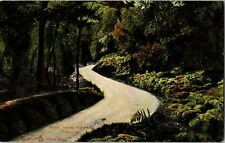 POST CARD WHERE TWINES THE PATH TROSSACHS