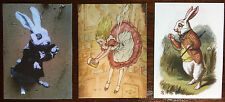 Alice in Wonderland White Rabbit Three ACEO Canvas Prints Down the rabbit hole