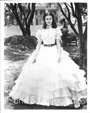 Vivien Leigh 8x10 photo E311f Gone With The Wind
