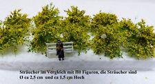Vickto Sträucher 10 Stück H0/TT Maigrün gelb blühend