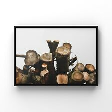 Log Stack. Professionally framed contemporary print. Original photograph