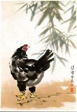 Oriental Look Bird-Fowl-Chicken-Hen Animal-Drawn Artwork-Modern Postcard