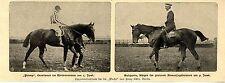 Die Sieger im Pferderennen von Berlin Unionrennen grosses Armeejagdrennen 1900