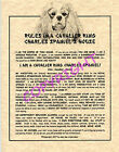 Rules In A Cavalier King Charles Spaniel's House