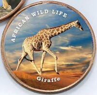 Somaliland 1 shilling 2018 UNC African Giraffe 26mm unusual coin