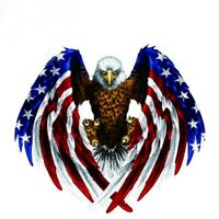 Decal sticker for Car motorcycle eagle with USA flag N9Q1