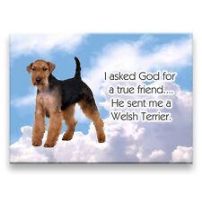 Welsh Terrier True Friend From God Fridge Magnet Dog