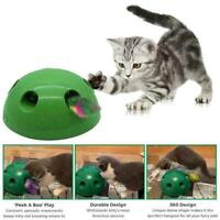 Funny Interactive Motion Cat Toy Mouse Tease Electronic Pet Toys