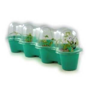 Little Gardeners Caterpillar Greenhouse Kit - Growing kit for kids