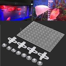 18 x 23cm Holes Aquarium Fish Tank Acrylic Divider Tray Filter w/ 4 Suction Cup