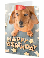 Cute Dachshund sausage dog arranges treats to say Happy Birthday card