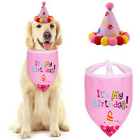 2pcs/Set Pet Dog Birthday Cone Hat & Bandana Scarf Puppy Party Supplies