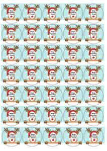 reindeer food labels, sweet bags, School  parties or gifts 37mm x 35 stickers