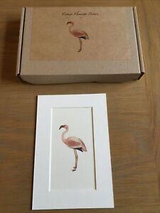"""Boxed 6x4"""" Vintage Flamingo Picture"""
