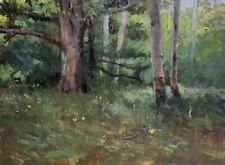 Shane Harris Original Oil Painting Impressionist Summer Birch Tree