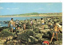 CP 62 - PAS-DE-CALAIS - La Peche aux moules